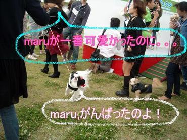 Maru_2