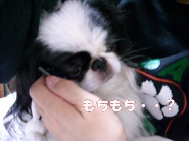 20090520_134
